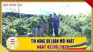 An ninh ngày mới hôm nay | Tin tức Việt Nam mới nhất | Tin nóng 24h ngày 02/06/2020 | NHÀ NÔNG 24H