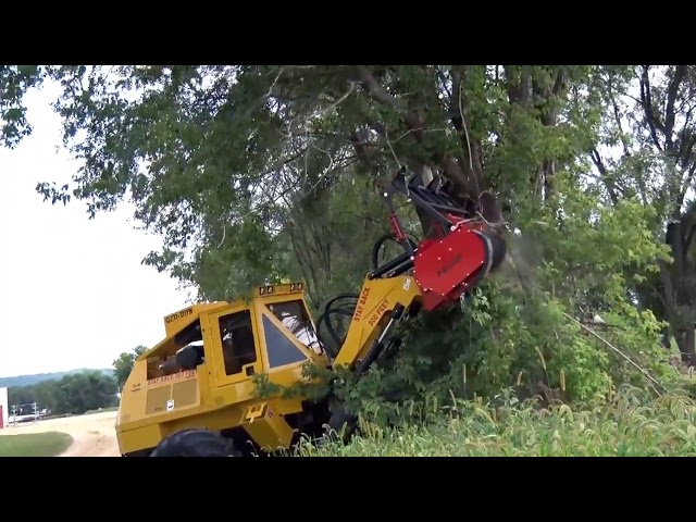 Land Clearing - Trees | Geo-Boy