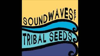 Tribal Seeds - Right on Time