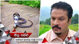 නයාට බය වුන මාලන්   Neela Pabalu   Sirasa TV Thumbnail