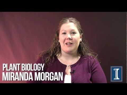 Illinois PSM Candidate Miranda Morgan Discusses AGCO Internship