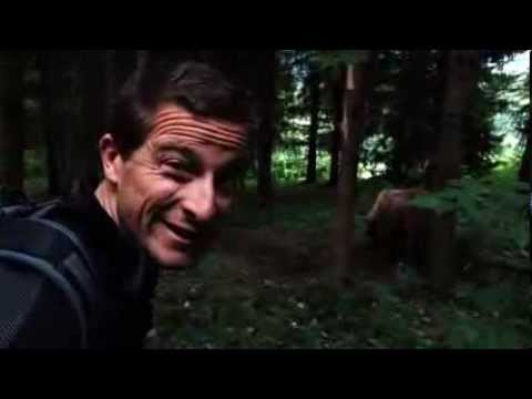 Bear Grylls – Escape from Hell: Black Bear