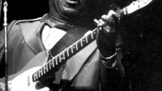 Watch Muddy Waters Walking Blues video