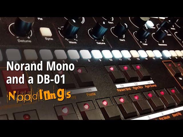 Norand Mono and a DB-01 - noodlings (no talking)