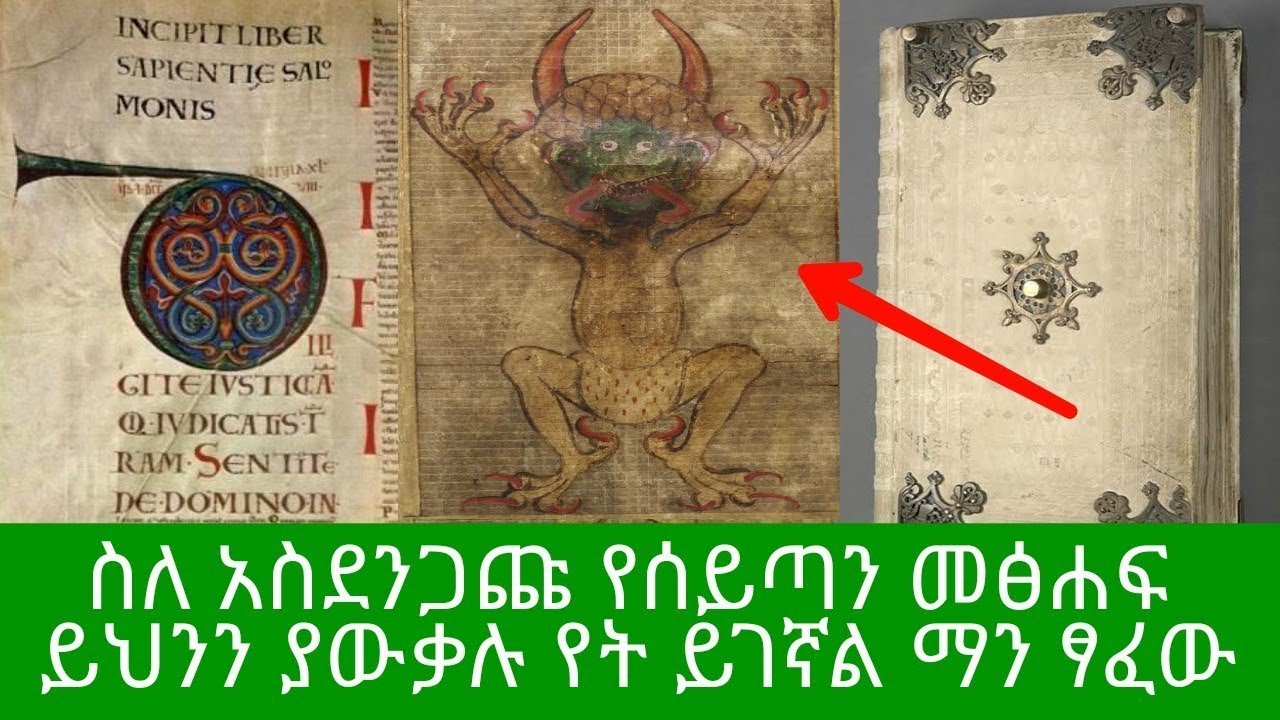 Things You Should Know About The Codex Book