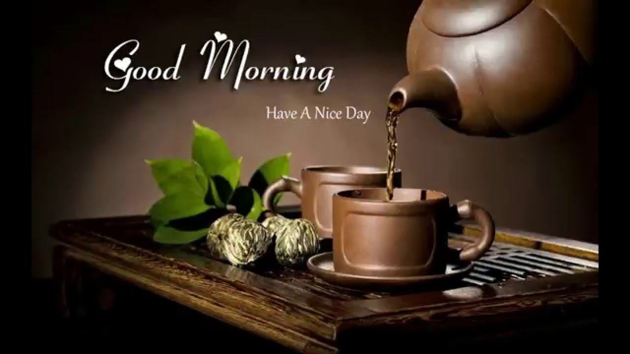 Good Morning America Have A Nice Day Youtube