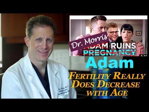 Dr Morris Ruins Adam: A response to Adam Conover's Adam Ruins Pregnancy  InfertilityTV