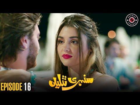 Sunehri Titliyan | Episode 16 | Turkish Drama | Hande Ercel | Dramas Central