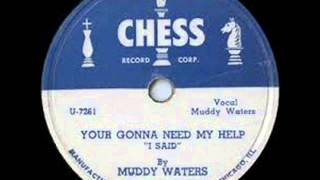 Muddy Waters & Little Walter,You