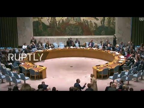 Live: UNSC discusses UK letter on Skripal case