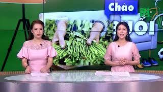 VTC14 | Những thực phẩm nào ăn vào dễ bị nhiễm độc chì?