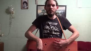 Хей, соколы! / украинская народная песня / гусли