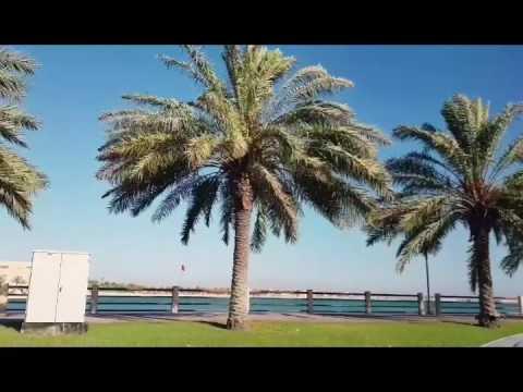Bahrain City Life