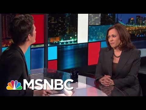 2020 Candidates: Road To Nomination | Rachel Maddow | MSNBC