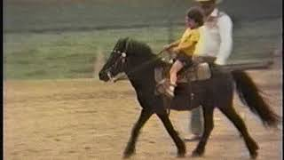 late 70s home movies 1976-1984 (NOT my video)