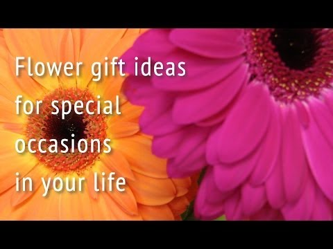 Flower occasions - flower gift ideas for special days - Marshall's Florist, Chorley, UK