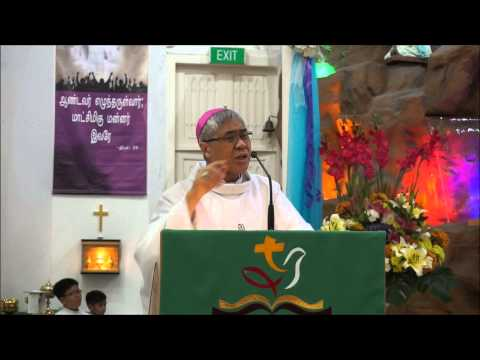 Church of Our Lady of Lourdes Feastday Homily