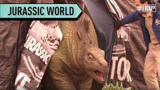 What If Dinosaurs Came To Your School?! | Localish