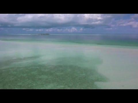 The Offspring - The Future Is Now - Lyrics [HD]Kaynak: YouTube · Süre: 4 dakika17 saniye