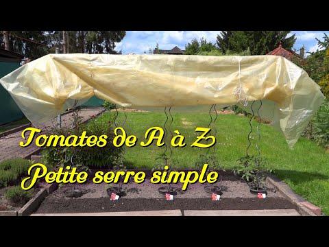 Tomates 23 Une Serre Toute Simple Youtube