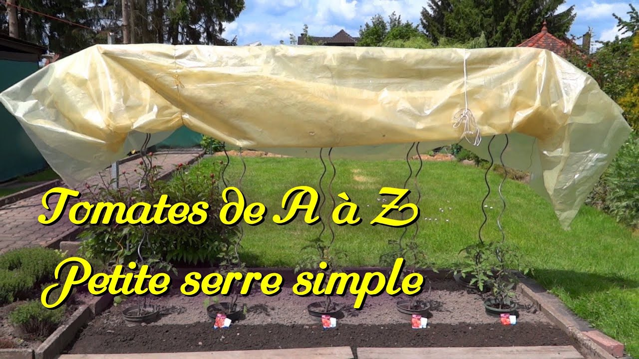 Serre Tunnel 3 X 6 Tomatoes 2 3 A Very Simple Greenhouse