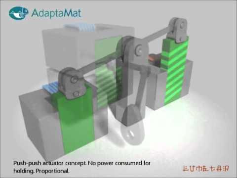 Adaptamat: Magnetic Shape Memory Alloy (www.adaptamat.com)