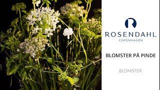 Rosendahl & Annette Von Einem - Blomster på pinde: lav en skulpturel dekoration