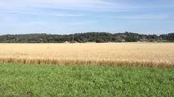 Itäuusimaa peltomaisema