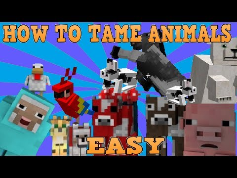 How To Tame And Breed Animals Minecraft