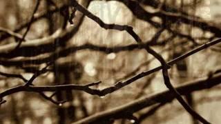 Amber Tears - Through Autumnal Rain