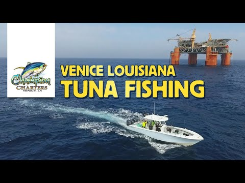 Venice Louisiana Tuna Fishing Charters Aboard Champion Charters