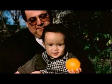 Reincarnation - Gus Taylor
