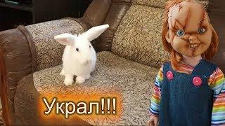 Кукла Чаки УКРАЛА кролика Лялю!
