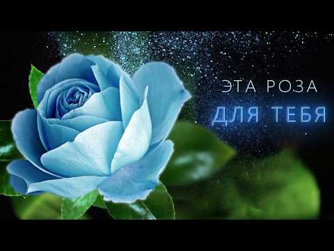 💖Эта роза для тебя💖Музыкальная анимационная открытка