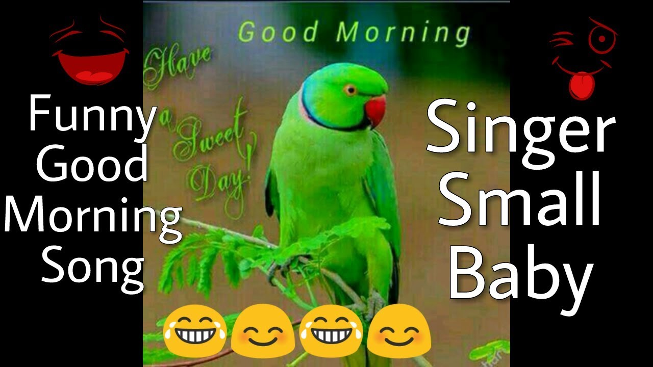 Funny Good Morning Song from Whatsapp Viral | Singer Small ...