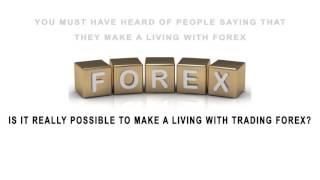 Basics of Forex Trading  - MBA - University - Netx