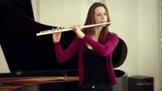 FLUTES - What Makes Them Different?
