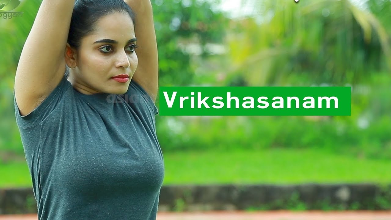 Yoga For beginners Vrikshasanam by Yogarogyam | English