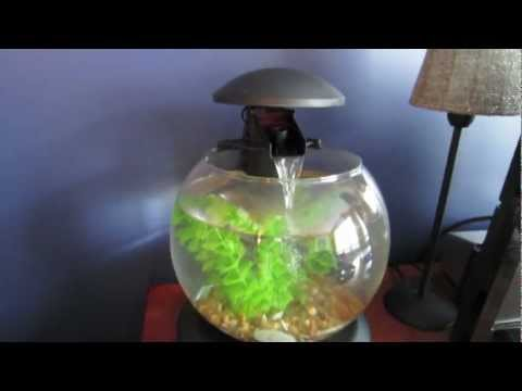 How To Set Up A Small Aquarium - Globe