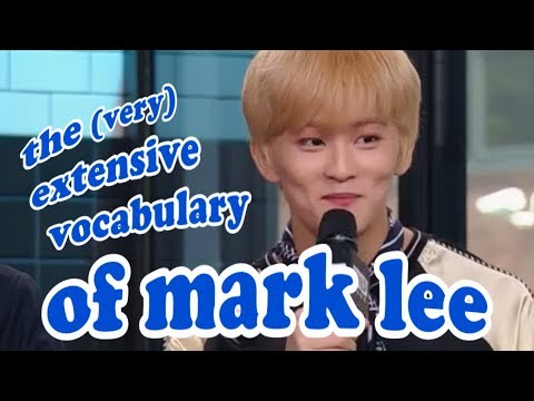 intro to mark lee's vocabulary