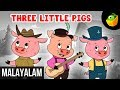 Three Little Pigs | Bed Time Story | Magicbox Malayalam Stories