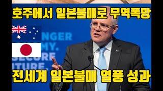 (긴급)호주도 일본불매/10년만에 호주에서 무역폭망 /…