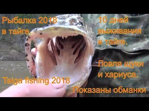 Таежная рыбалка 2018.