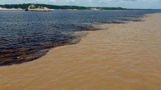 Слияние Амазонки и Риу Негру. Confluence of the Amazon and Rio Negro(Онлайн путешествие по Бразилии. В шести милях от Манаус в Бразилии можно наблюдать одно из величайших прояв..., 2015-06-01T04:45:37.000Z)