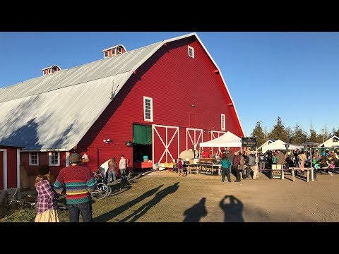 Beat The Blues Barn Dance Sequim - Hosted By The Five Acre School