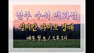가덕 수석 경매장 실시간 경매 라이브 9월26일(토요일…