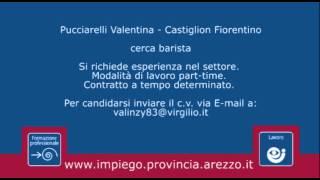 Offerte di lavoro nella Provincia di Arezzo