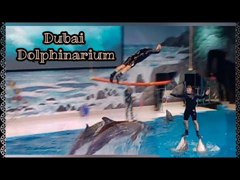 DOLPHIN TRICKS IN DUBAI DOLPHINARIUM | Manay Magayon