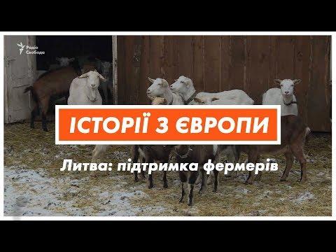 Литва: більше гектарів