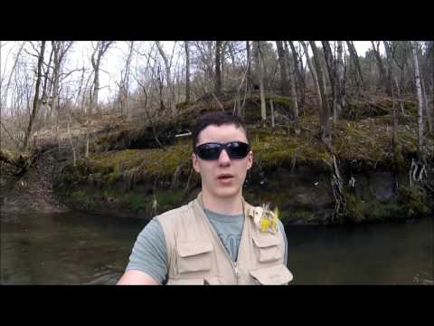 Early Season Driftless Area Trout